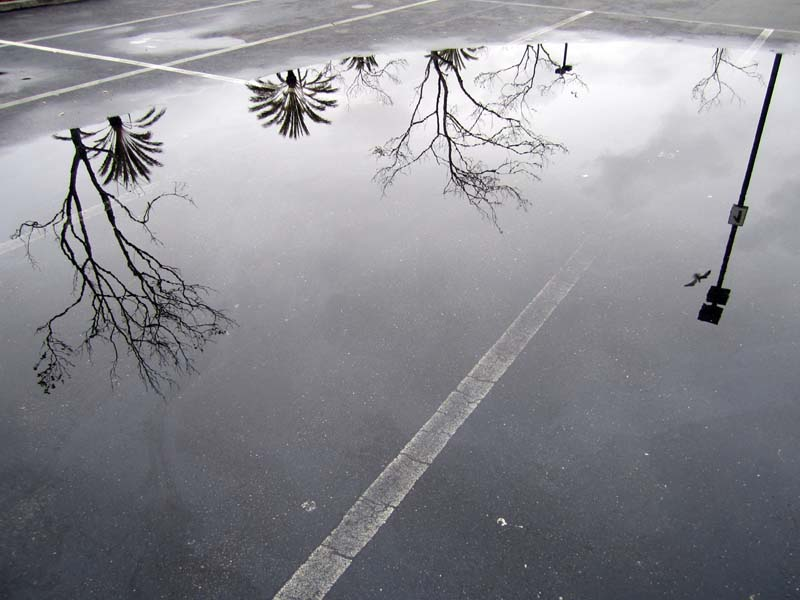 ParkingLotPuddle