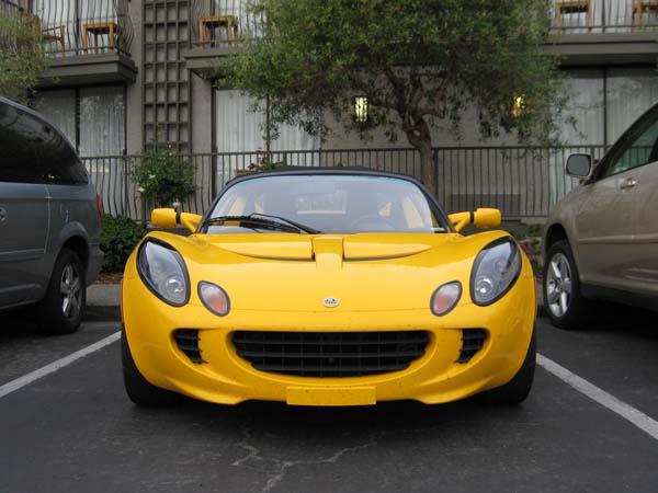 YellowLotus