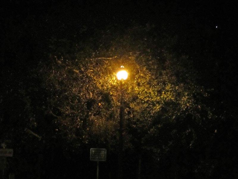 Jupiter lamp IMG_9646