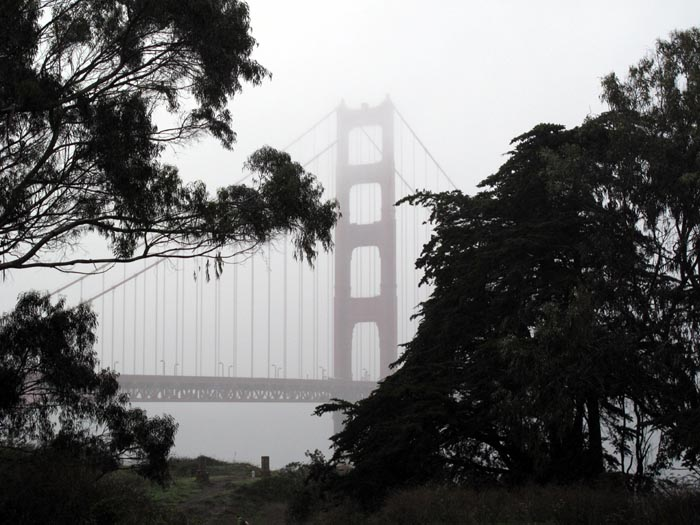 Golden Gate Bridge in rain - Max Clarke