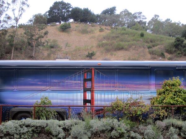 Bus ggb hillside - max clarke