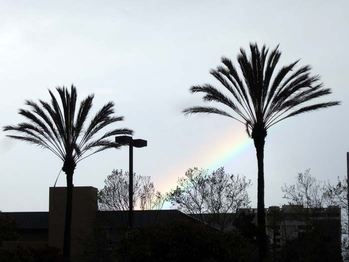 Rainbow liftoff - max clarke