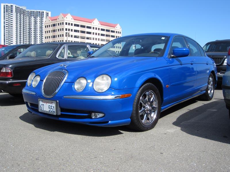 Blue jaguar - photo by max clarke