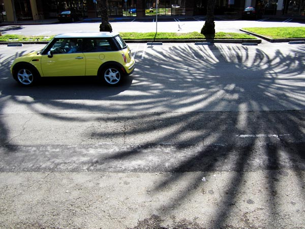 Car and Shadow - photo by Max Clarke