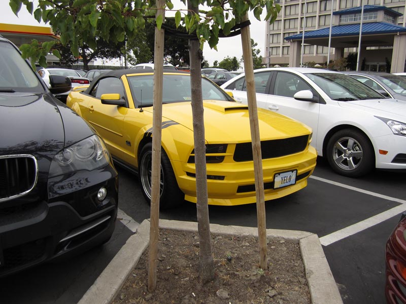 Yelo Car - photo by Max Clarke