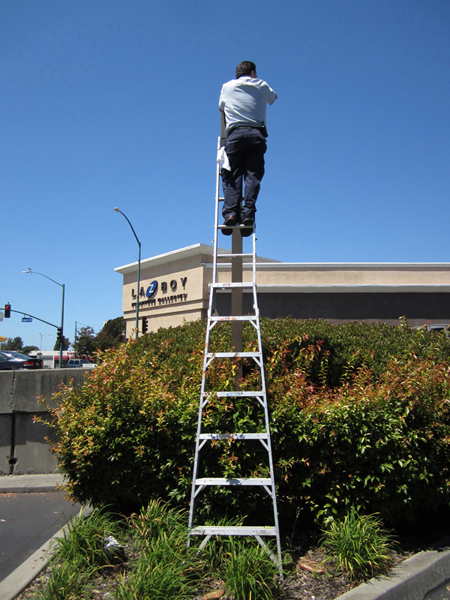 Ladder Man Stands Above Lazy Boy - photo by Max Clarke