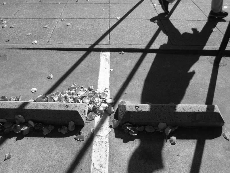 Sidewalk Shadows -BW- photo by Max Clarke