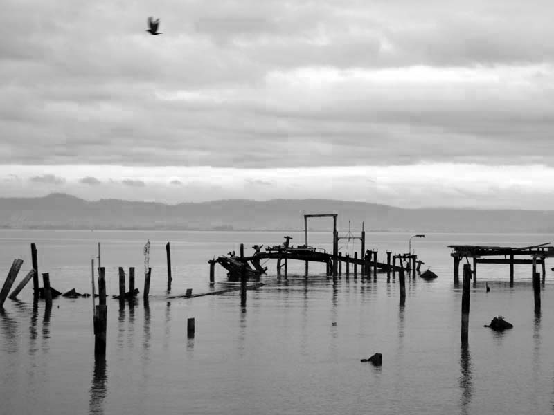 Pier Ruins -BW- photo by Max Clarke