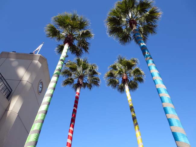 Palm Trees-©-photo by Max Clarke