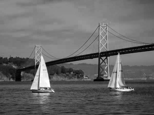 Sailboats-©-photo by Max Clarke