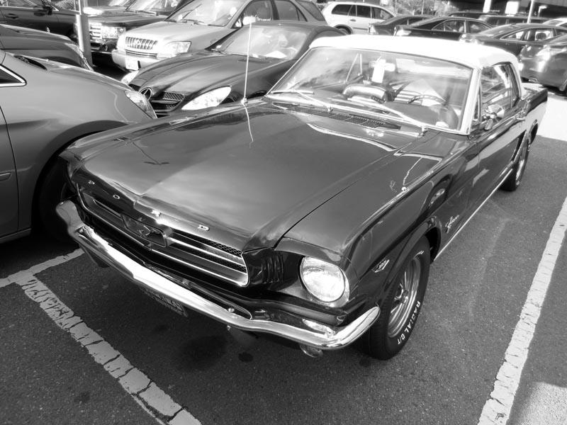 1965 Ford Mustang -©- photo by Max Clarke