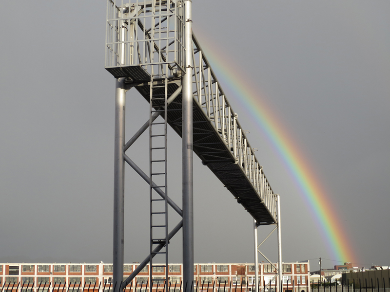 Rainbow Ladder- photo by Max Clarke