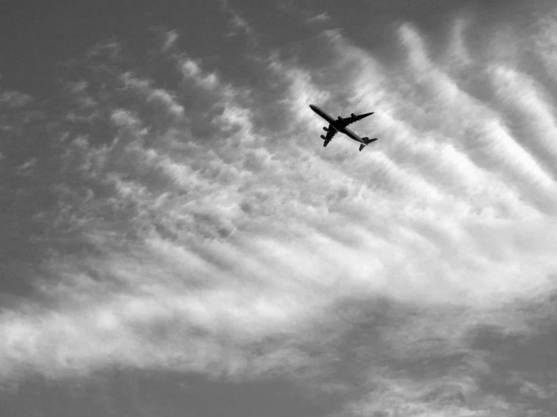 Jumbo Jet © photo by Max Clarke