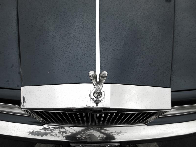 Rolls Royce Hood © photo by Max Clarke