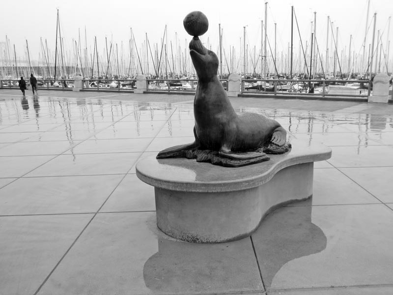 Seal Statue -BW- photo by Max Clarke