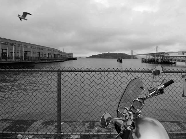 Motorcycle and Bird-©-photo by Max Clarke