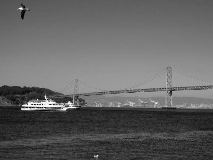 Bay Bridge -©- photo by Max Clarke