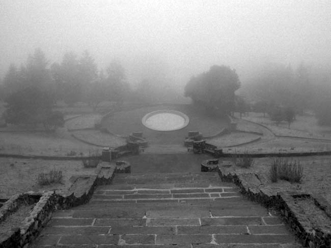 The Pool In The Fog -©- photo by Max Clarke