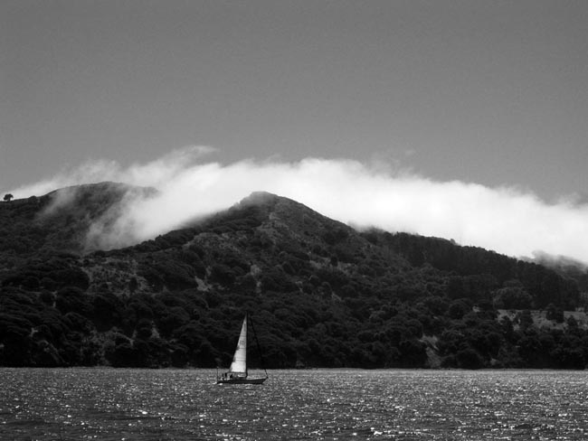 Angel Island Sailboat -©- photo by Max Clarke