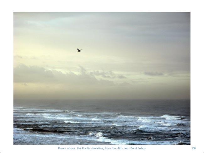 Pacific dawn © photo by Max Clarke