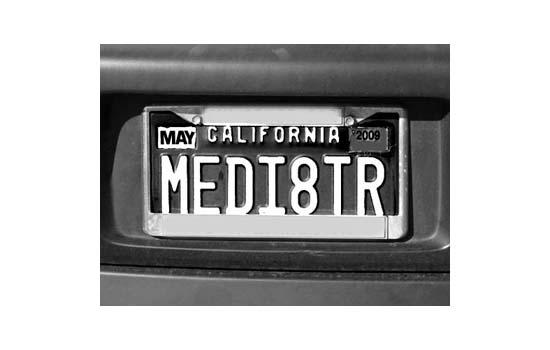 Mediator plate - Max Clarke