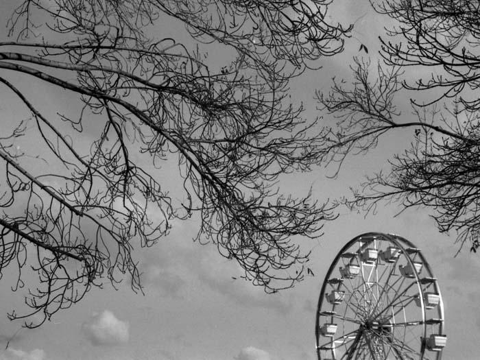 Ferris Wheel © Max Clarke