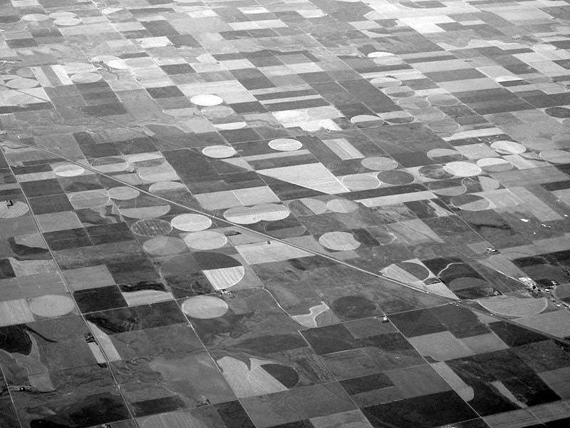 24 Crop Circles - Max Clarke