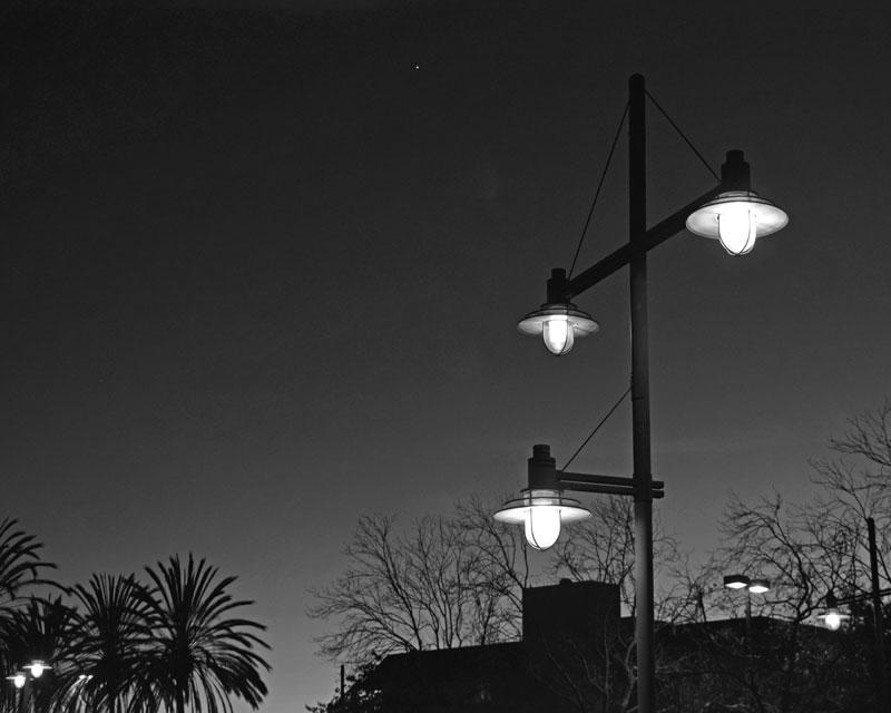 51 Venus Above Street Lamps - Max Clarke