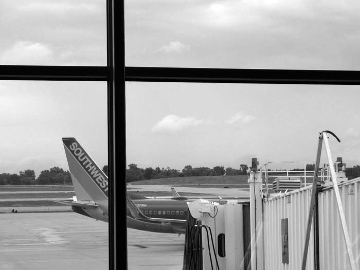 Flight 3951 -©- Max Clarke