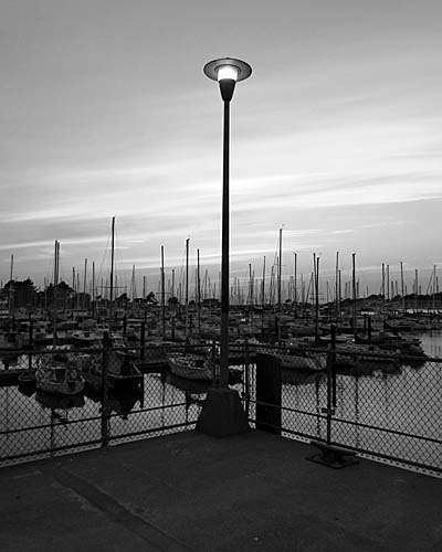6 Marina Lamp vertical © photo by Max Clarke