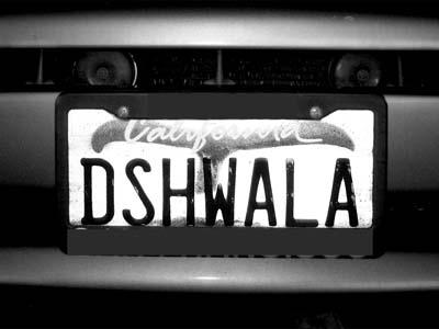 Dish Wallah - Max Clarke