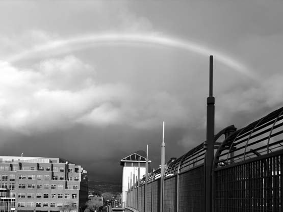 Rainbow - Max Clarke