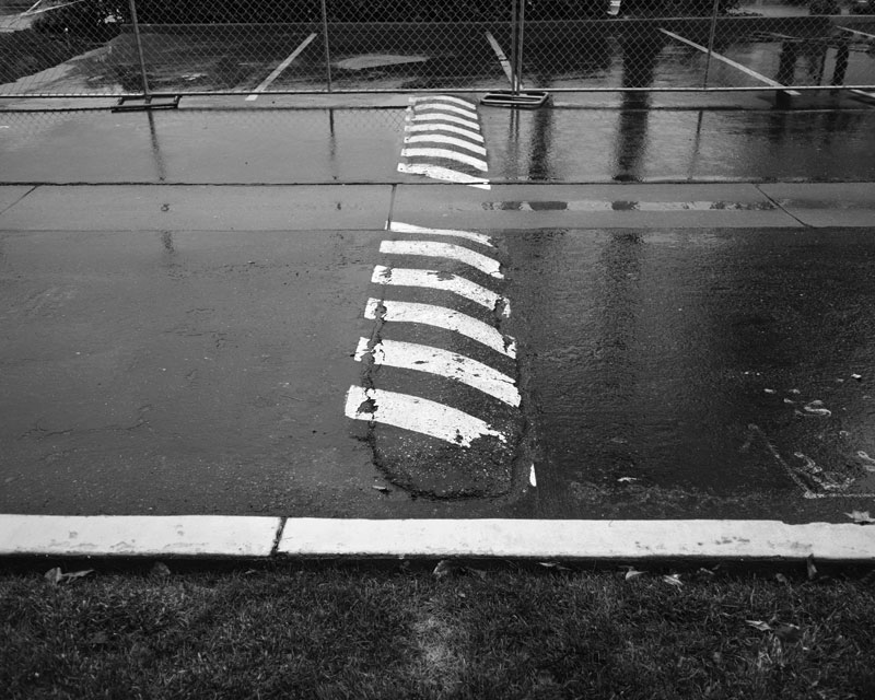 41 Speed Bump in the Rain - Max Clarke