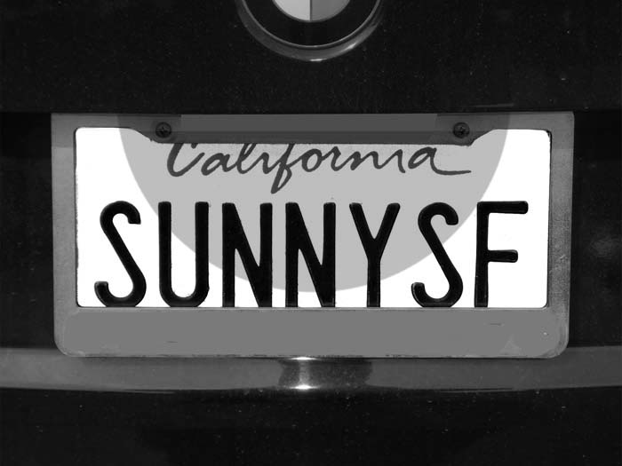 SUNNY -SF-max-clarke-bw-one