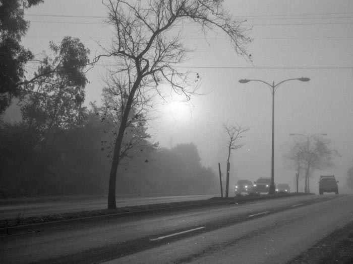 Sun-and-fog-and-traffic---max-clarke