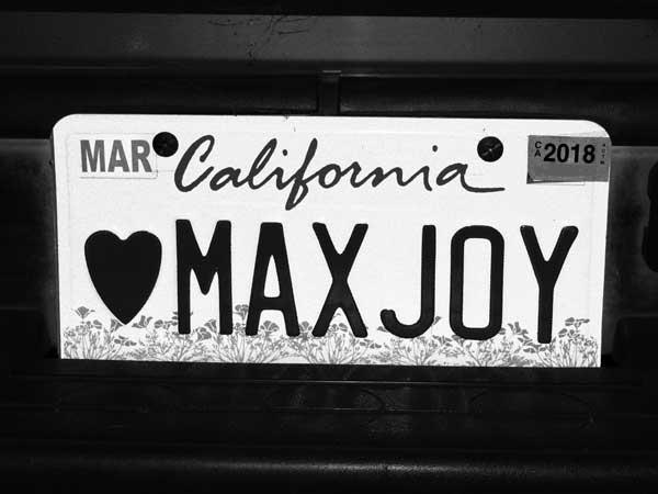 Heart-MAX-JOY---max-clarke