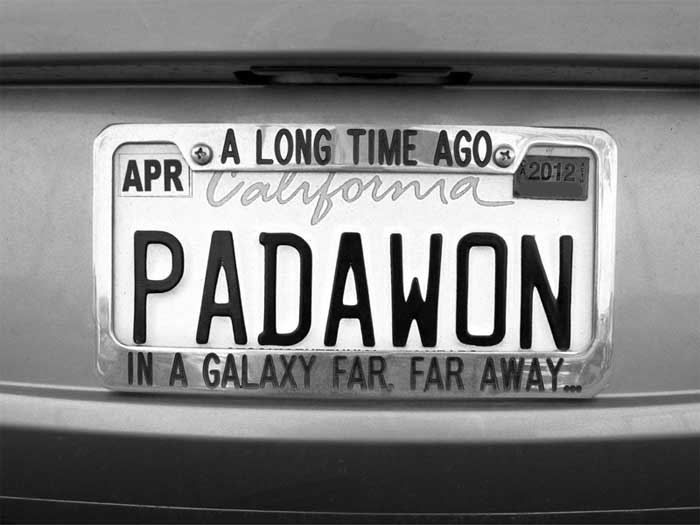 PADDLE-ON-PADAWAN---max-clarke