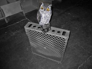 OWL-FIGURINE-BREAD-TRAY-max-clarke