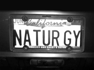 NATURE-GUY-max-clarke