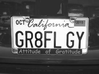GRATEFUL-GUY---max-clarke