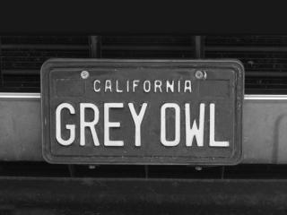 GREY-OWL-max-clarke