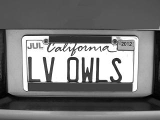 LOVE-OWLS-max-clarke