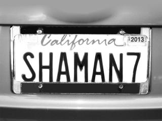 SHAMAN-7---MAX-CLARKE